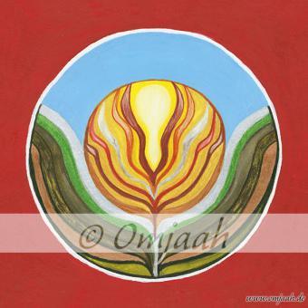 C041 - Mandala Die Neue Erde